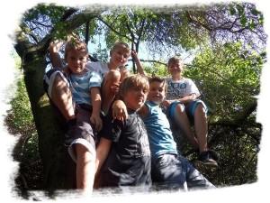 Camp 2012-20
