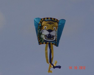 Drachenfest 14.10.2012 072