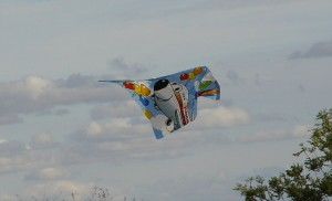 Drachenfest 14.10.2012 075