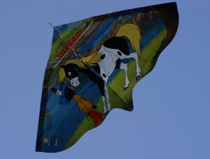 Drachenfest Okt. 2013 (38)